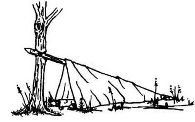 ساخت سر پناه در طبیعت