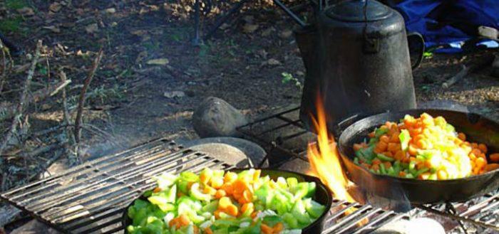 پخت و پز در سفرهای طبیعت گردی